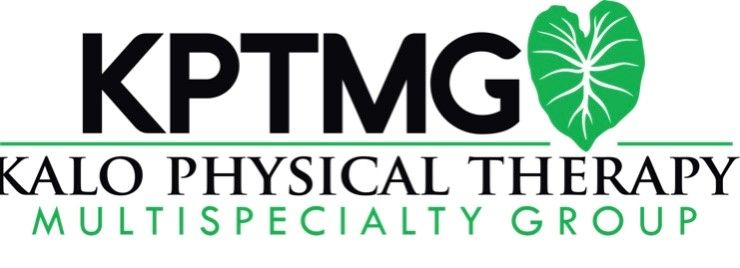 Kalo Physical Therapy Multispeciality Group logo